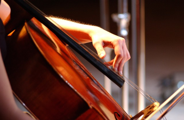 20030134_Cello-Details